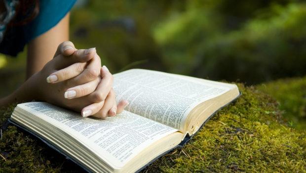 CHƯƠNG TRÌNH THỜ PHƯỢNG DÀNH CHO BAN PHỤ NỮ. 19.07.2020