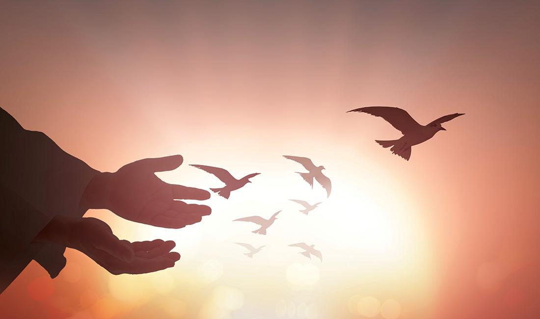 CHƯƠNG TRÌNH THỜ PHƯỢNG DÀNH CHO BAN PHỤ NỮ. 21.02.2021