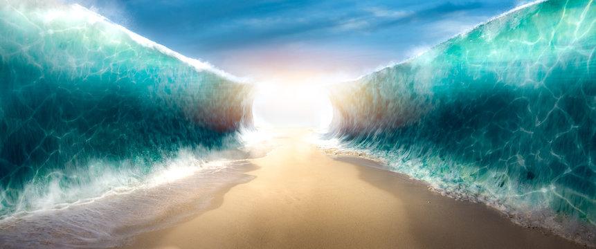 CHƯƠNG TRÌNH THỜ PHƯỢNG DÀNH CHO BAN THANH NIÊN. 22.08.2021